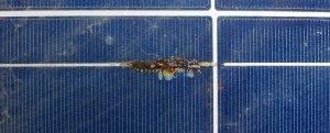 Damaged solar panel Brisbane